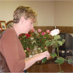 Gail Smith Grooming Roses